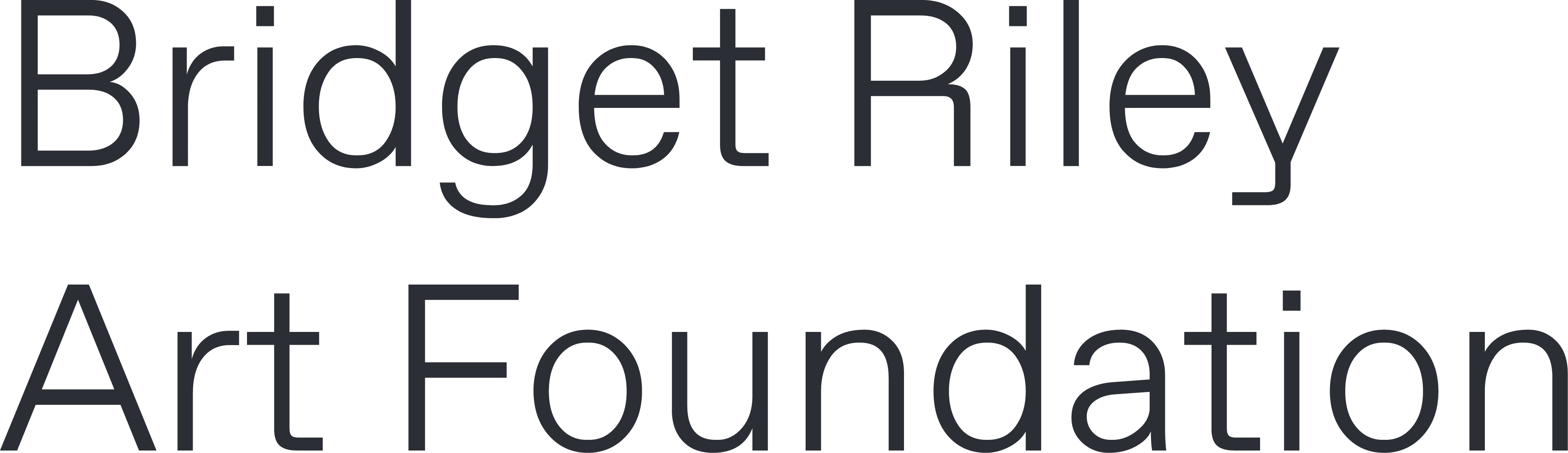 Bridge Riley Art Foundation